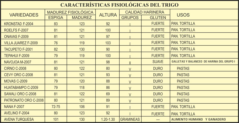 Características agronómicas de variedades de trigo sembradas en el Valle del Carrizo, Sinaloa. INIFAP-CIRNO-CEVAF 2012-2013